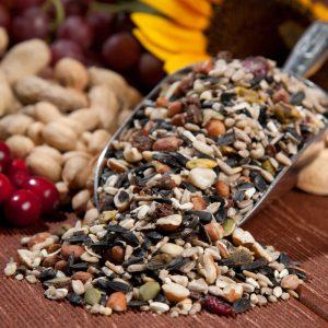 premium bird seed mix