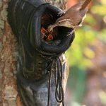 Shoe nesting box
