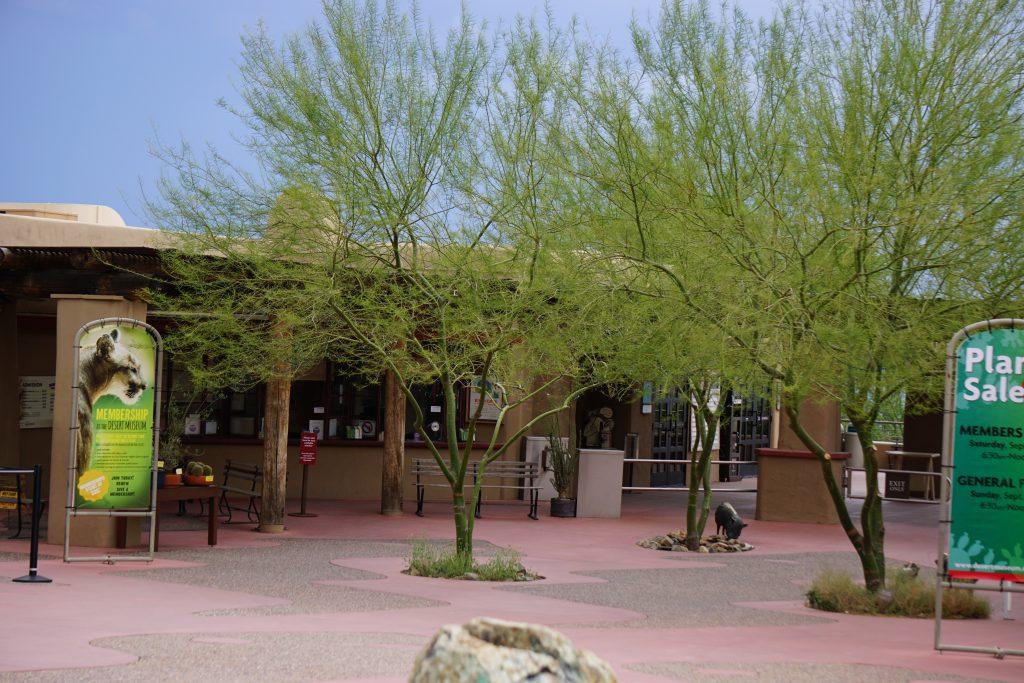 Senora Desert Museum