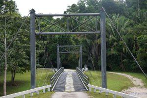 suspension bridge chan chich - birding belize