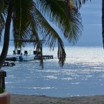 sunrise matachica - birding belize the beach