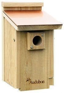 blue bird box - attract bluebirds to your yard