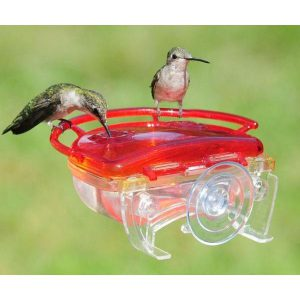 window hummingbird feeder - top 5 best hummingbird feeders