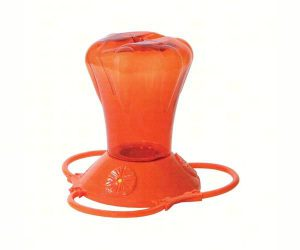 oriole nectar feeder - how to attract orioles to your yard