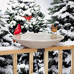 heated birdbath - water is for the birds